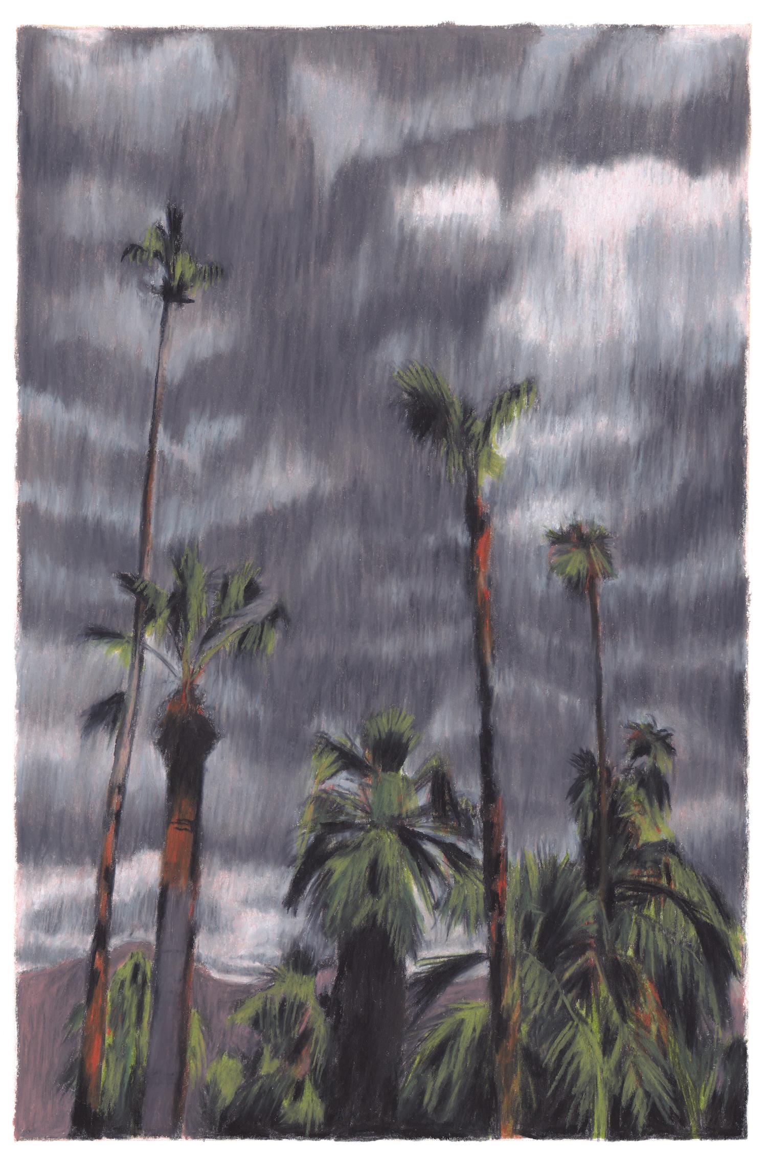 palmiers ciel d'orage californie