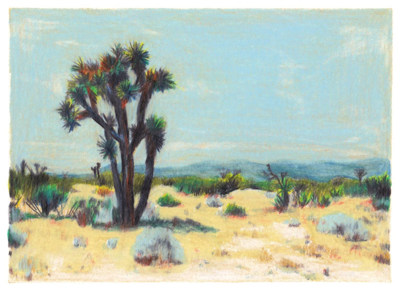 désert californie sable
