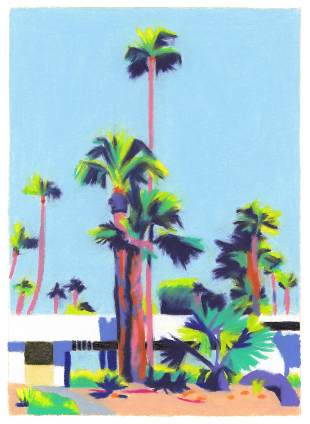 villa futuriste murs blancs palmiers immenses