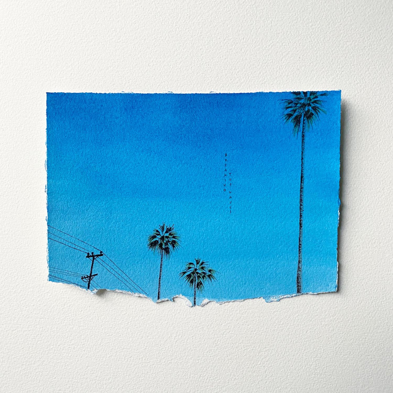 ciel bleu palmiers câbles californie