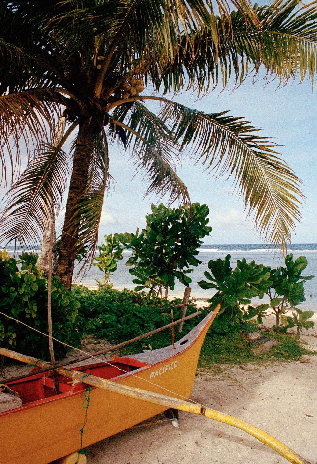 Pirogue jaune posée sur le sable en bord de mer sous un palmier