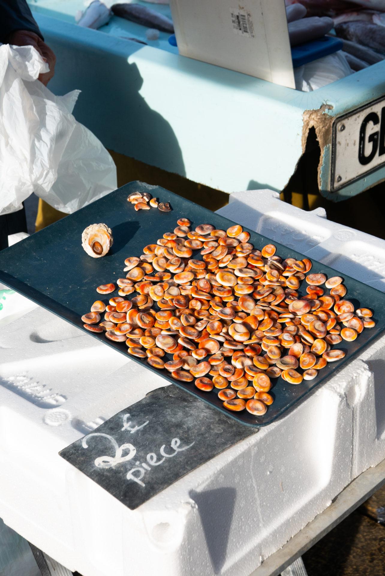 Plat de fruits de mer en vente sur le marché